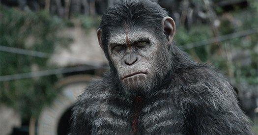 Dawn of the Planet of the Apes blu-ray anmeldelse