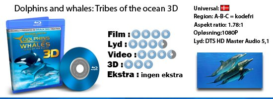 Dolphins and whales: tribes of the ocean - 3D